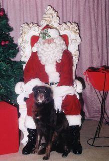 Mocha Santa